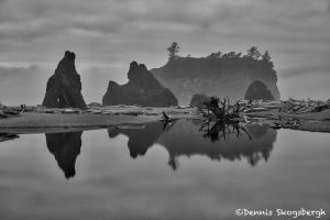 5505 Cloudy Morning, Ruby Beach, Olympic National Park, WA