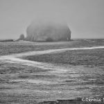 5516 Foggy Morning, Mouth of Quileute River, La Push, WA