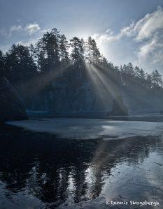 5517 'God Beams', Foggy Morning, Ruby Beach, Olympic National Park, WA