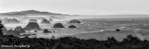 5571 Foggy Morning, Elk, California