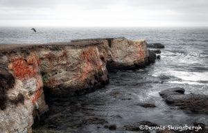 5605 Coastal View, Point Arena, California