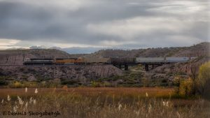 5748 Train, Trestle, Bosque del Apache NWR, New Mexico