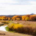 5753 November Colors, Bosque del Apache NWR, New Mexico