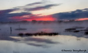 5762 Foggy Sunrise, Bosque de Apache NWR, New Mexico
