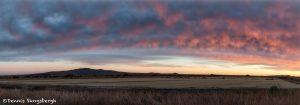 5783 Sunset, Bosque del Apache NWR, New Mexico