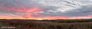 5784 Sunset, Bosque del Apache NWR, New Mexico