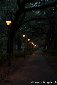 6267 Dawn, Forsyth Park, Savannah Georgia