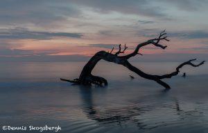 6270 Sunrise, Jeckyll Island, Georgia