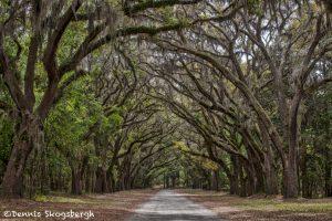 6275 Wormslow Plantation, Savannah, Georgia