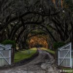 6280 Sunrise, Tomotely Plantation, Charleston, SC