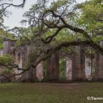 6289 Old Sheldon Church Ruins, Yemassee, SC