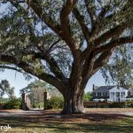 6294 Boone Hall Plantation, Mt. Pleasant, SC