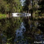6297 Magnolia Plantation and Gardens, Charleston, SC