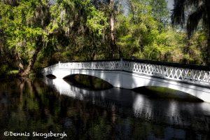 6298 Magnolia Plantation and Gardens, Charleston, SC