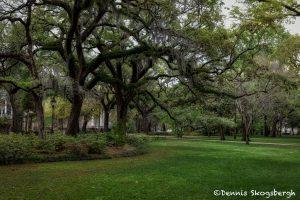 6317 Forsyth Park, Savannah, GA