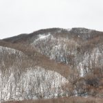 7053 Winter Landscape, Hokkaido, Japan