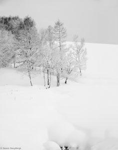 7076 Winter Landscape, Oumu, Hokkaido, Japan