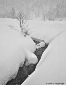 7108 Winter Landscape, Biei, Hokkaido, Japan