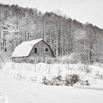 7117 Winter Landscape, Barn in Oumu, Hokkaido, Japan