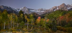 7248 Autum, Dallas Divide, CO