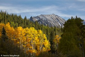 7259 Autumn, San Juan Mountains, CO