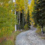 7260 Autumn Colors, San Juan Mountains
