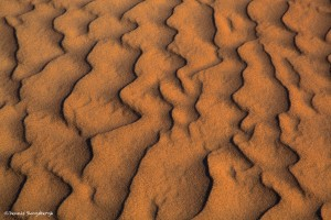 1065 Sand Pattern, Death Valley National Park