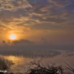 1217 Sunrise, Fog, Hagerman National Wildlife Refuge, First Place Landscape Winner