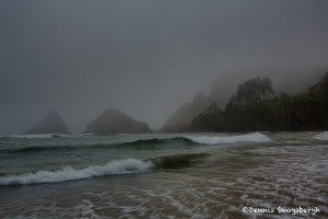 1239 Evening, Fog, Heceta Head Beach, Yachatas, OR