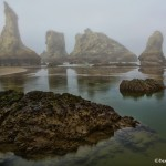 1274 Morning, Bandon Beach, OR