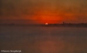 1578 Rolling Fog, Sunrise