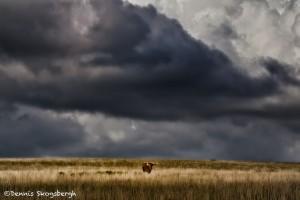 1601 Storm Clouds