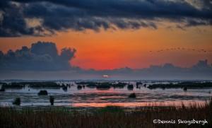 1628 Sunrise, Texas Coast
