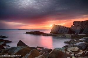 1666 Sunrise, Thunder Hole, Maine Coast
