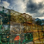1690 Lobster Traps