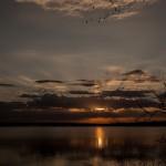 2091 Sunrise