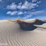 6254 Sand Patterns, Monahans Sandhills State Park, TX