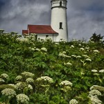 1226 Cape Blanco Lighthouse, Port Oreford, OR