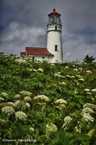1226 Cape Blanco Lighthouse, Port Oreford, OR