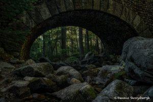 6130 Carriage Road Cobblestone Bridge, Acadia National Park, Maine