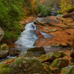 1707 Lynn Camp Prong Cascades with Autumn Color