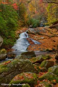 1707 Lynn Camp Prong Cascades with Autumn Color
