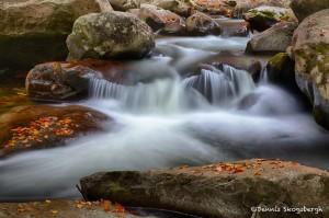 1724 Autumn, Greenbriar Stream