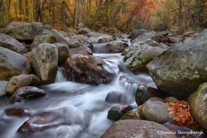 1729 Mountain Stream