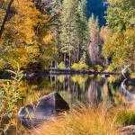 1741 Merced River, Autumn Colors