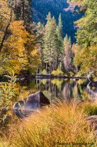 1741 Merced River, Autumn Colors