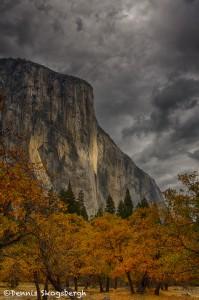 1753 El Capitan, Autumn Color, Brewing Snow Storm