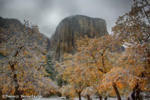 1775 El Capitan, Autumn Color, Recent Snow