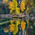 1783 Autumn Colors, Merced River