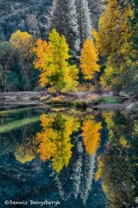 1783 Autumn Colors, Merced River